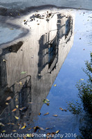 Reflections in Puddle IV